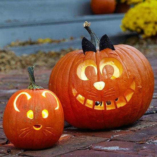 Pumpkin carving tips for parents barracudas